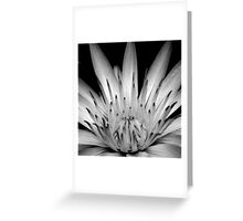 What You Think You Become. Greeting Card