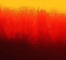 Burnt Fog by virginian