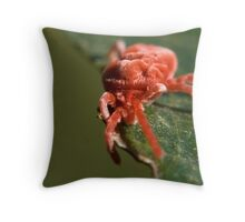 A Mite ticked off Throw Pillow