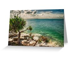 Colours of summer Greeting Card