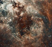 Hubble Space Telescope Print 0018 - The Tarantula Nebula in the Large Magellanic Cloud - hs-2012-01-g-full_jpg by wetdryvac