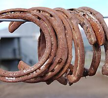 Rusting horse shoes. by Barbara Caffell
