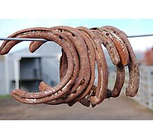 Rusting horse shoes. Photographic Print