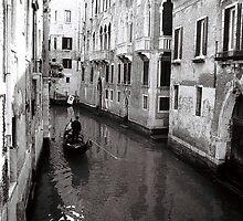 Venice Mornings  by Venice