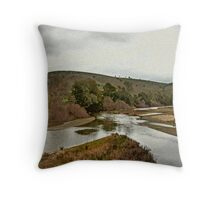 Collab with Max Throw Pillow