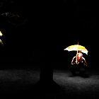 the ninja life, part II by zep wernbacher-dundo
