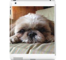 Meeka the Puppy iPad Case/Skin