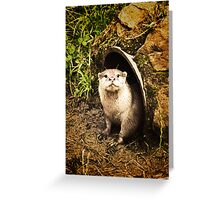 Holt. Who Goes There? Greeting Card