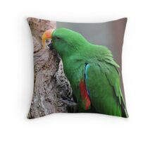 Male Eclectus Parrot II Throw Pillow