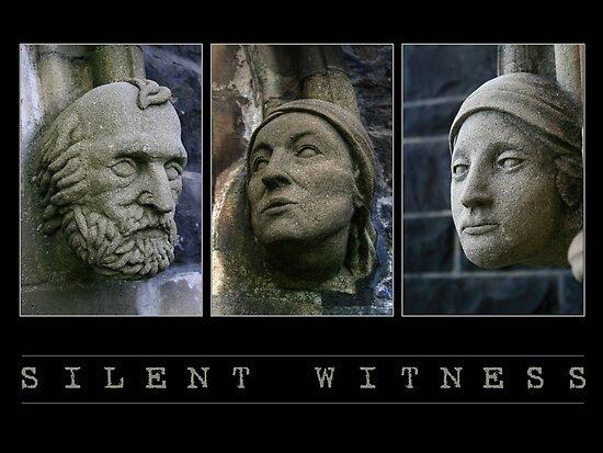 Silent Witness by GerryMac