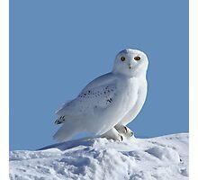 Saint Of The Snow Photographic Print