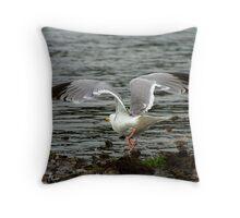 Gull Wing Throw Pillow