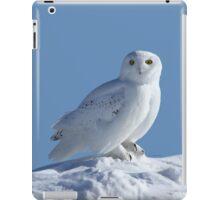 Saint Of The Snow iPad Case/Skin
