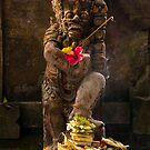 Offerings - Bali, Indonesia by Stephen Permezel