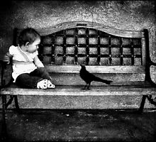 The Baby and the Bird by Hollie Cook