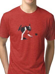 A Dog and his Ball Tri-blend T-Shirt
