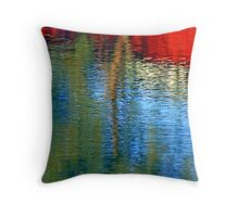 Rural Color Throw Pillow