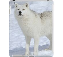 In another world iPad Case/Skin