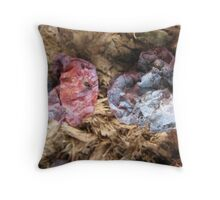persimmons, drying Throw Pillow