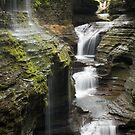 Cascading Beauty by Jeff Palm Photography