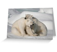Polar Brothers Greeting Card