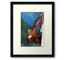 Pee-Yew Framed Print
