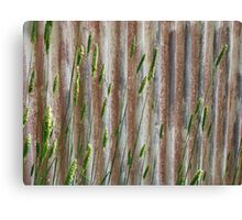 Iron and Nature Canvas Print