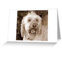 Baileyboo Greeting Card