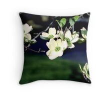 Blooming Branches of Spring Throw Pillow