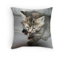 cute kitten cleaning claw Throw Pillow