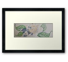 a simple gardenia 'for the love of flowers' © 2007 patricia vannucci  Framed Print