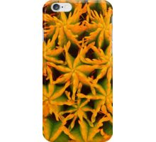 orange star pattern iPhone Case/Skin