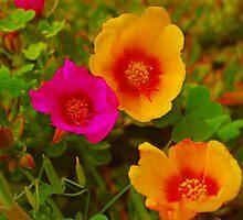 Magenta and Orange Garden Flowers by Janet Ellen Lusk