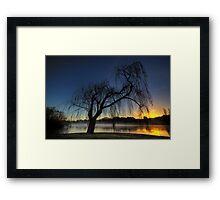 Winter willow 2 Framed Print