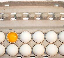 Eggscellent by Donell Trostrud
