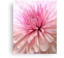Cotton Candy Canvas Print