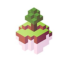 Minecraft Simple Floating Island - Isometric Photographic Print