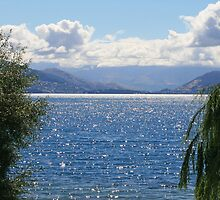 Looking over Lake Wakatipu towards Queenstown by DRWilliams
