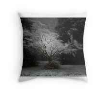 Untitled 27 Throw Pillow