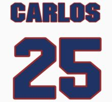 National baseball player Carlos Delgado jersey 25 by imsport