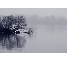 Sounds of Silence Photographic Print