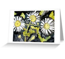 heath aster flower watercolor painting Greeting Card