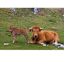 Mother and son, Picos de Europa, Spain Photographic Print