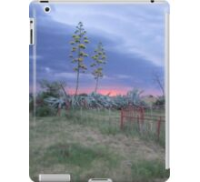 Cactus in stormy weather iPad Case/Skin