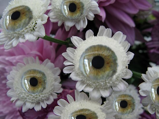 Eye-Flower by Mike Paget