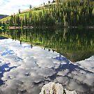 High Mountain Wilderness by Gene Praag