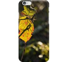 Early Morning Leaf iPhone Case/Skin