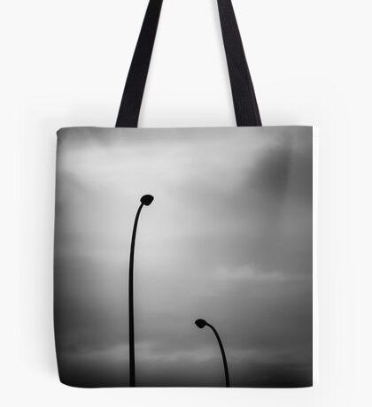 seeking absolution Tote Bag