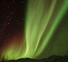 The Northern Light , Alaska USA.( Sold 8 image YAY )  by Nina  Matthews Photography