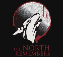 The North Remembers by DesignKi